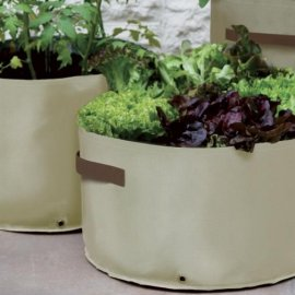 Assorted Vegetable Planters (pack of 3)