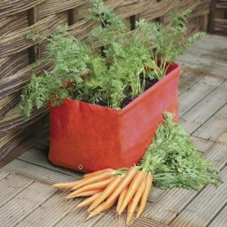 Carrot Planters (pack of 2)