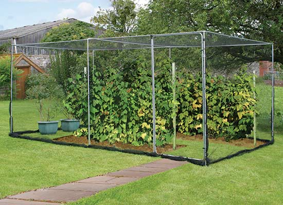 Agriframes Fruit Cage with Door - Click Image to Close