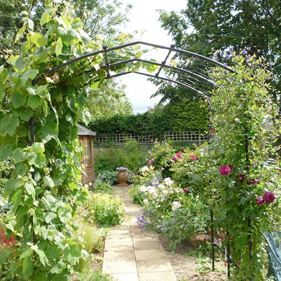 Agriframes Vine Arch - Click Image to Close