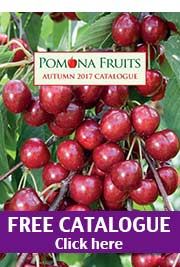 Click here for Free Catalogue