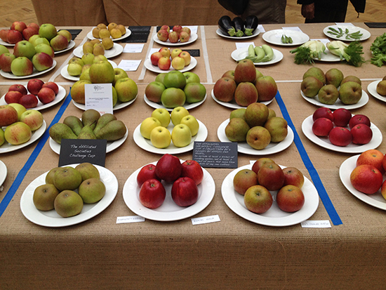 A display of apples and pears.
